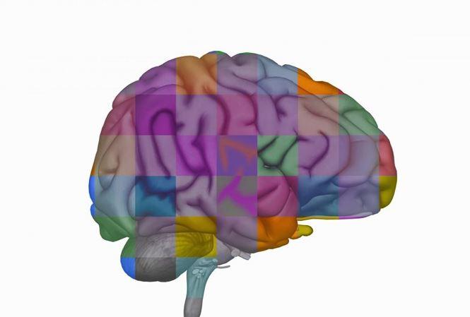 Đột phá khoa học: Phát hiện thuốc diệt u não ác tính
