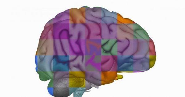 Tin vui y học: Phát hiện thuốc diệt u não ác tính