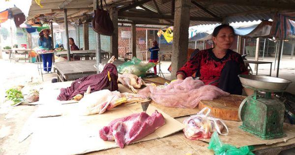 Dịch tả lợn châu Phi khiến người kinh doanh điêu đứng