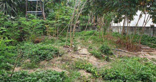 Ly kỳ hợp đồng đất đổi tài sản của người dân với chủ dự án Khu quy hoạch nhà ở phường Linh Tây, quận Thủ Đức