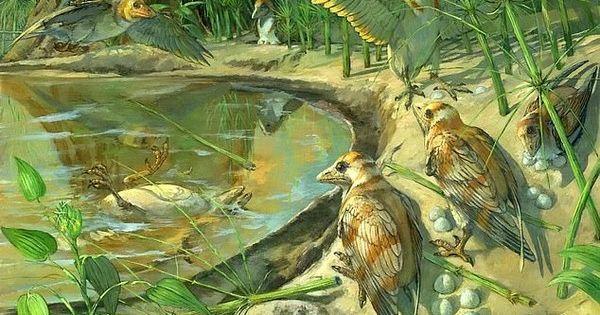 Phát hiện trứng hóa thạch trong xác chim tiền sử 110 triệu năm tuổi