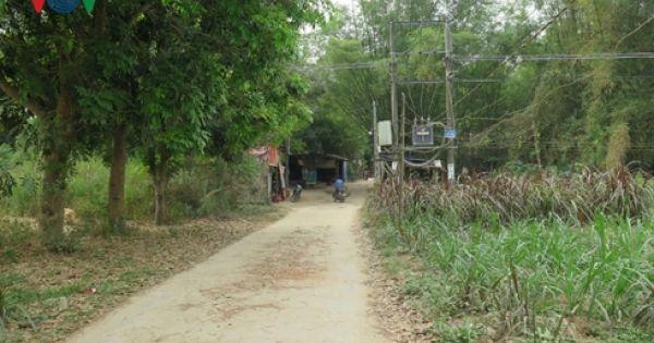 Sốt đất đã đến… bụi tre làng của vùng đất Quảng Ngãi