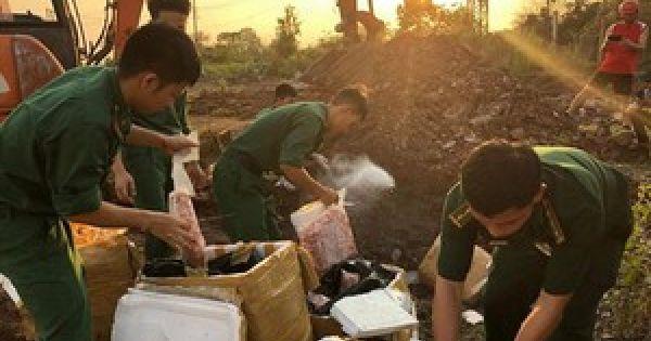 Đà Nẵng: Tiêu hủy 1 tấn sụn gà thối, vô chủ vứt bên đường