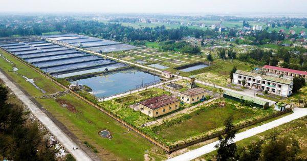 Hà Tĩnh: Trung tâm thực nghiệm nghìn tỷ bỏ hoang, doanh nghiệp thuê nuôi tôm