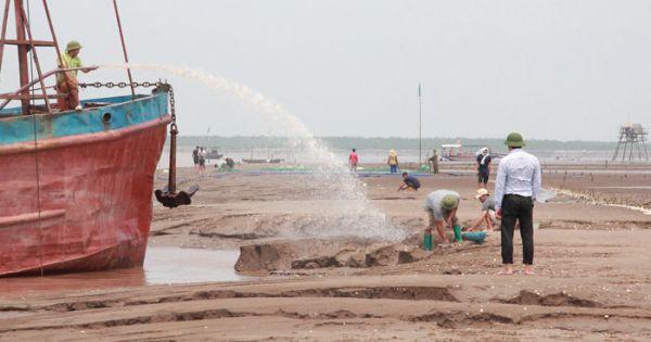 Tỉnh Thái Bình cấp phép khai thác cát cho doanh nghiệp ở cửa biển Hải Phòng?