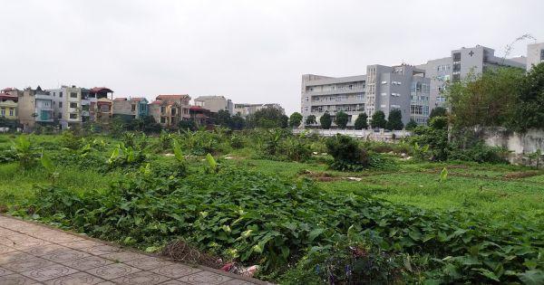 Hà Nội: Hàng loạt dự án giao cho Doanh nghiệp nhưng không đấu thầu