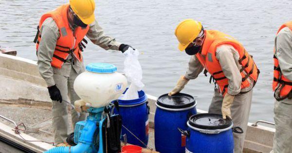 Hà Nội: Thanh tra toàn diện việc mua, sử dụng chất Redoxy-3C