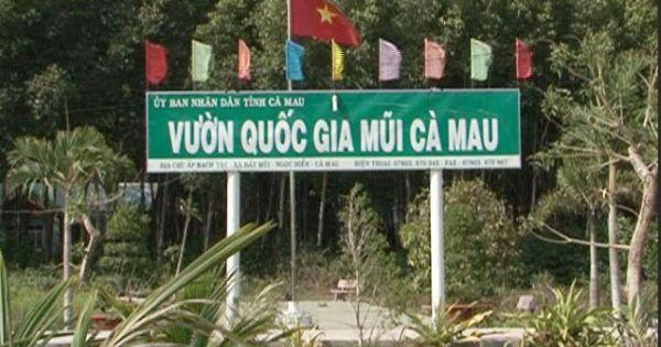 Chuyển cơ quan điều tra các sai phạm tại Vườn quốc gia Mũi Cà Mau