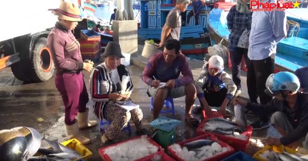 Buổi sáng ở cảng cá Cà Ná - Ninh Thuận