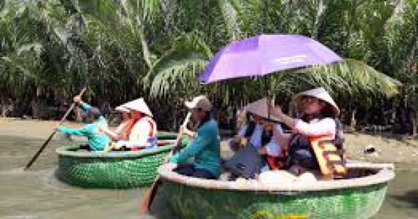 Hội An xử phạt nghiêm tình trạng xâm phạm rừng dừa nước Bảy Mẫu