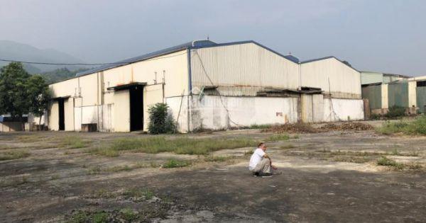 Hải Dương: 9/10 doanh nghiệp vi phạm pháp luật về đất đai tại Cụm công nghiệp Kỳ Sơn