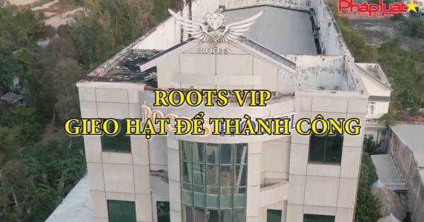ROOTS VIP Gieo hạt để thành công