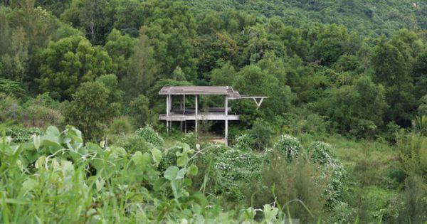 """Cận cảnh những dự án """"băm nát"""" bán đảo Sơn Trà bị bỏ hoang"""