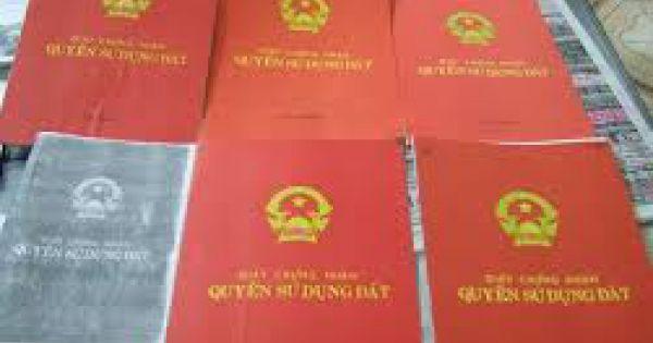 """Hàng chục """"sổ đỏ"""" cấp sai quy định cho đất rừng tại Yên Bài - Ba Vì, Hà Nội"""