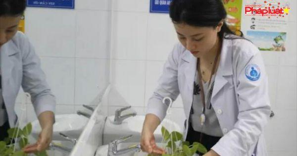 Nữ Bác sĩ với khát vọng phủ xanh bệnh viện