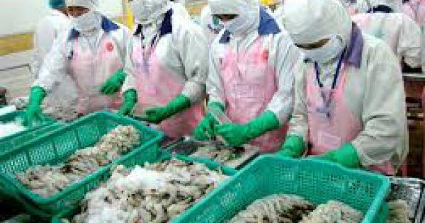 Doanh nghiệp thủy sản sụt giảm 35-50% đơn hàng vì Covid-19