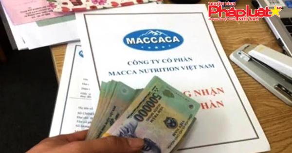 Những dấu hiệu bất thường trong mô hình kinh doanh của công ty Macca Nutrition