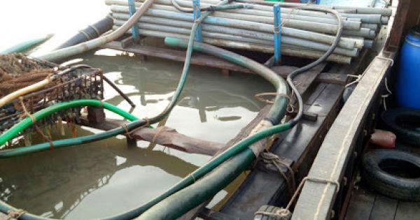Ghe gỗ biển số Campuchia hút trộm cát trên sông Tiền