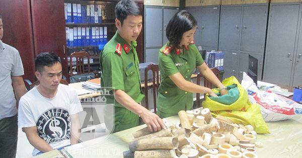 Phát hiện 2 cơ sở kinh doanh sản phẩm có nghi vấn chế tác từ ngà voi