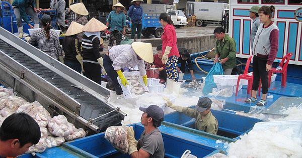Doanh nghiệp thủy sản bức xúc bị