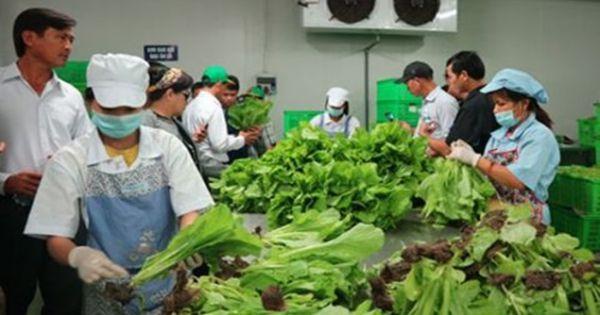 Giảm 10% phí trong công tác an toàn vệ sinh thực phẩm