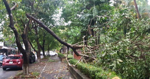 Sau bão, số người bị thương ở TT-Huế tăng gấp 4 lần