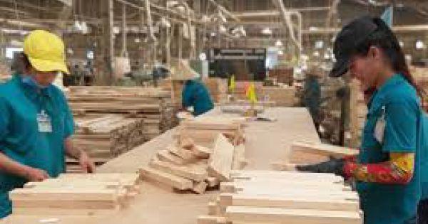 Kiểm tra, xử lý phản ánh về ngành gỗ có nguy cơ mất thị trường