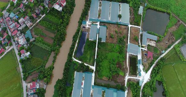 """Hưng Hà (Thái Bình): Trang trại chăn nuôi lợn Đức Minh """"bức tử"""" môi trường?"""