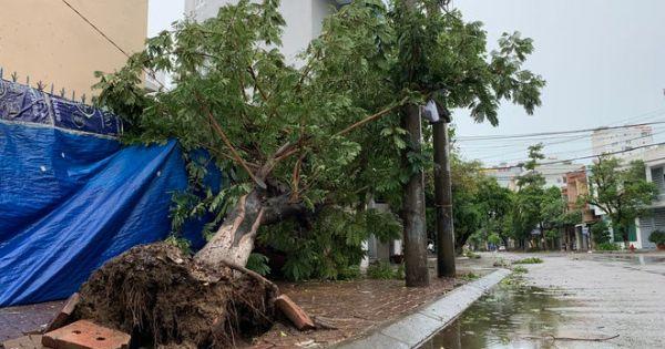 Quảng Ngãi đã có những thiệt hại ban đầu do bão số 9 gây ra