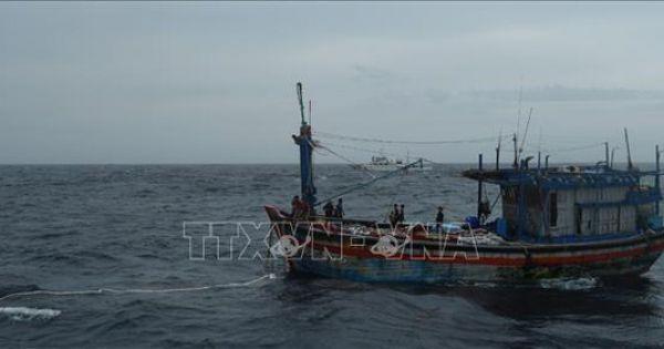 3 ngư dân trên tàu cá Bình Định đã được cứu