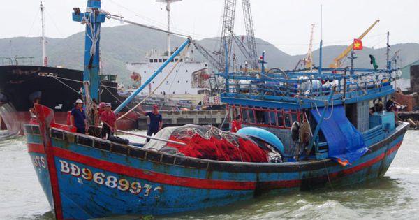 Tàu hàng Nhật Bản cứu sống 3 ngư dân tàu chìm ở Bình Định