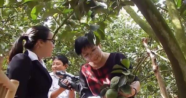 Du lịch miệt vườn Đồng Tháp