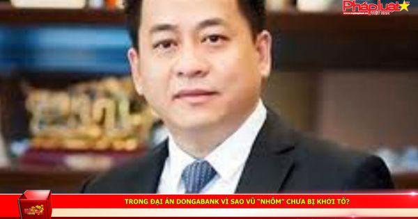 """Trong đại án DongABank vì sao Vũ """"nhôm"""" chưa bị khởi tố?"""