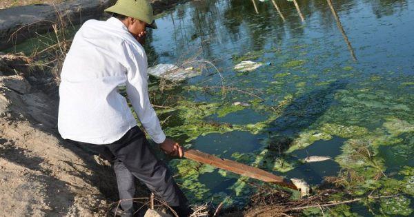 Hà Tĩnh: Trại tôm xả nước thải thẳng ra môi trường