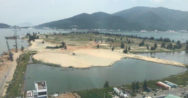 """Ninh Bình: Xót xa hàng chục hecta """"đất vàng"""" bỏ hoang giữa lòng thành phố"""