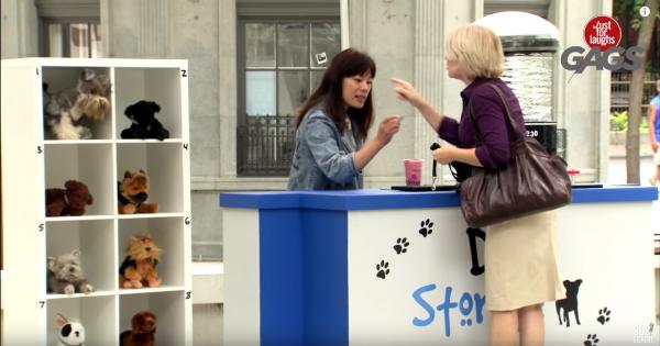 Cười chút chơi: Turning Stuffed Dogs into Real Dogs