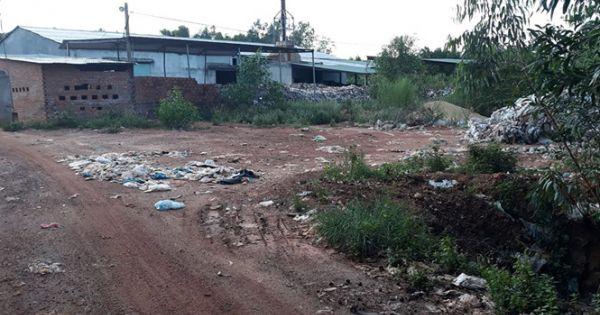 Bình Định: Bị đình chỉ nhưng nhà máy xử lý rác vẫn hoạt động gây mùi hôi thối