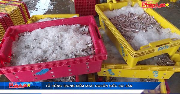 Lỗ hổng trong kiểm soát nguồn gốc hải sản