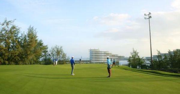Gia Lai giao gần 200 ha rừng thông cho FLC làm sân golf