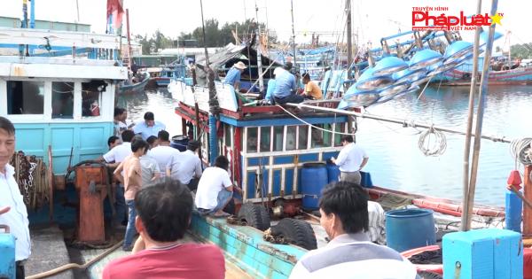 Quảng Ngãi: Thí điểm lắp đặt thiết bị giám sát hành trình trên tàu cá ngư dân