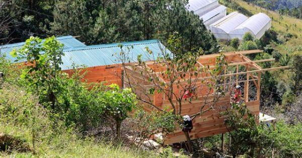 Tháo dỡ hàng loạt nhà không phép ở Đà Lạt