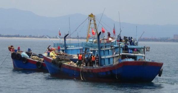 Quảng Bình: Xử phạt 2 tàu giã cào trái phép