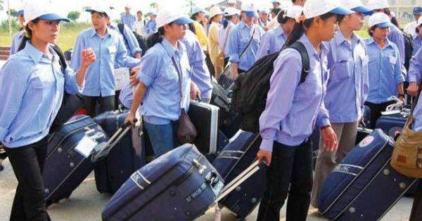 Xuất khẩu lao động đạt kỷ lục với hơn 140.000 người
