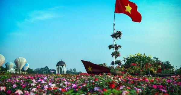 Cup vô địch làm từ nghìn bông hoa cổ vũ tuyển Việt Nam