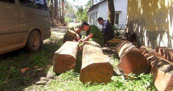 Tây Ninh điều tra vụ vận chuyển gỗ lậu bằng xe 16 chỗ