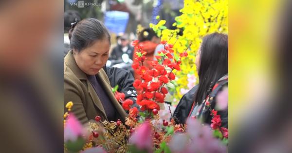 Chợ hoa Hà Nội hút khách mua sắm dịp cận Tết