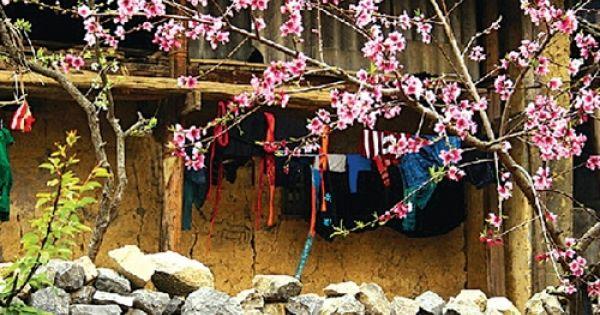 Phong tục ăn Tết của người Nùng Lạng Sơn
