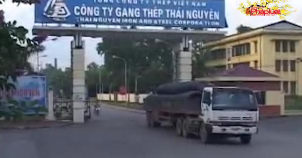 Cổ phiếu Gang thép Thái Nguyên liên tục lao dốc