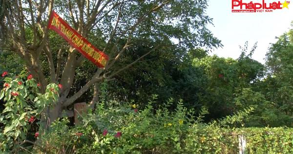 Hóc Môn: Việt kiều hồi hương kêu cứu.