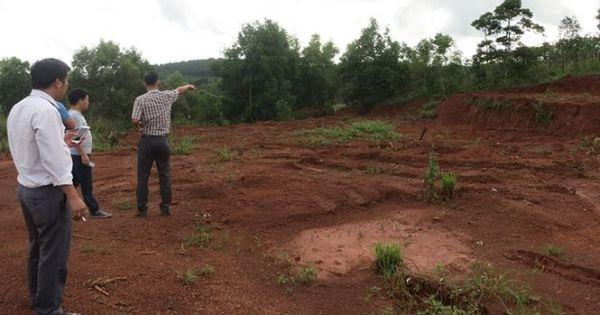 Đắk Nông: Hàng loạt cán bộ bị kỷ luật, khởi tố, lãnh đạo huyện trấn an dư luận